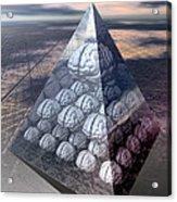 Decision-making Hierarchy Acrylic Print by Laguna Design