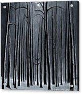 Deep Woods Acrylic Print
