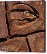 Deer Imprint In Mud Acrylic Print