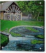 Deleon Springs Acrylic Print