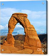 Delicate Sights Acrylic Print