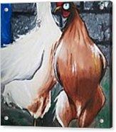 Delicious Chickens Acrylic Print
