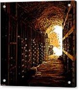 Den Of Dionysus Acrylic Print