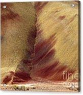 Desert Brushstrokes Acrylic Print