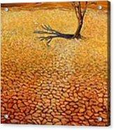 Desert Pan Acrylic Print