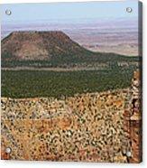 Desert Watch Tower View Acrylic Print