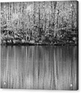 Desolate Splendor Bw Acrylic Print