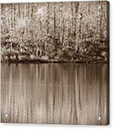 Desolate Splendor S Acrylic Print