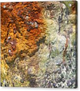 Detail Of A Rusted Dock Pier II Acrylic Print