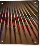 Detail Of Piano Strings Acrylic Print