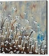 Determination Acrylic Print by Holly Donohoe