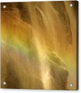 Devil In The Rainbow Acrylic Print