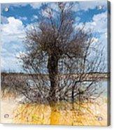 Die Standing Acrylic Print