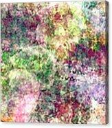 Digital Abstract Acrylic Print