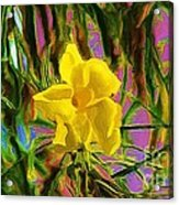 Digital Painting Of Yellow Orchid Acrylic Print