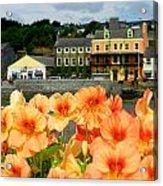 Dingle And Flower Pot Acrylic Print