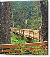 Discovery Trail Bridge Acrylic Print