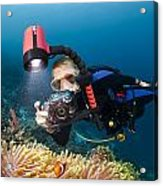 Diver And Anenome Fish Acrylic Print