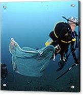 Diver Removes Invasive Indo-pacific Acrylic Print