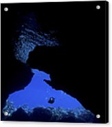 Diver With Lights Entering A Submerged Acrylic Print