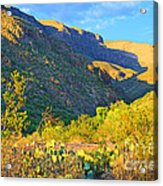 Dog Canyon Nm Oliver Lee Memorial State Park Acrylic Print