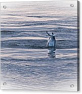 Dolphin Mullet Breakfast Acrylic Print