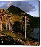 Doo Lough Pass, County Mayo, Ireland Acrylic Print