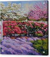 Dotti's Garden Spring Acrylic Print