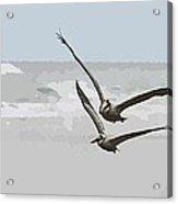 Double Flights Acrylic Print