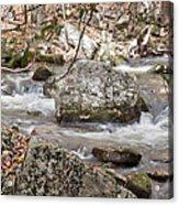Downstream From Cascade Falls Acrylic Print