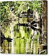 Downstream Reflections Acrylic Print