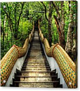 Dragon Steps Acrylic Print