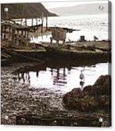 Drakes Bay Oyster Farm Acrylic Print