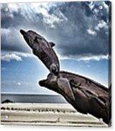 Dramatic Dolphins Acrylic Print