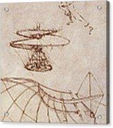 Drawings By Leonardo Divinci Acrylic Print