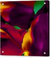 Dream Gardens - Tulip Petals - Shimmering Brights Acrylic Print