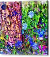 Dreaming Night And Day Acrylic Print