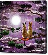 Dreaming Of A Pine Tree Acrylic Print