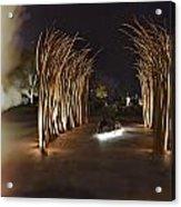 Dreamtime V2 Acrylic Print