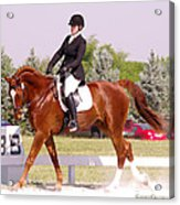 Dressage Test Acrylic Print