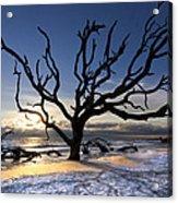 Driftwood Beach At Dawn Acrylic Print