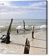 Driftwood Stands Watch Acrylic Print