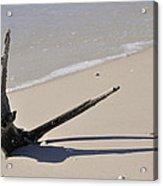 Driftwood Sun Dial Acrylic Print