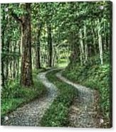 Driveway Out Acrylic Print by Heavens View Photography