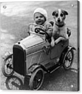 Driving Dog Acrylic Print by Norman Smith