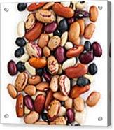 Dry Beans Acrylic Print by Elena Elisseeva