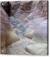 Dry Creek Bed 3 Acrylic Print