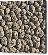 Dry Mud Patterns On The Racetrack Acrylic Print