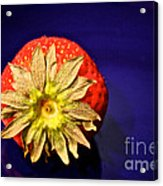 Dry Top Acrylic Print