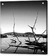 Dryden Lake New York Acrylic Print by Paul Ge